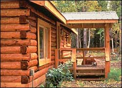 LOG HOME RESTORATION MAINTENANCE
